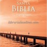 Biblia Reina Valera 1960  Letra Grande Rústico
