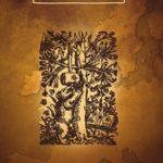 Pack 5 Biblias de la Reforma – RVR 1960
