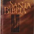 Santa Biblia , Versión Reina-Valera 1995 – Precio Liquidación